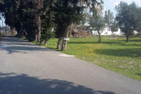 Kolympia village land sale rodos